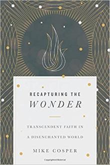 17 books - wonder